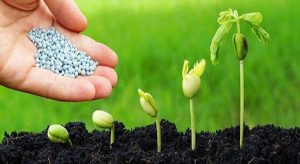 کود کشاورزی ارومیه