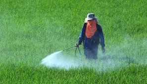 سموم کشاورزی ارگانیک