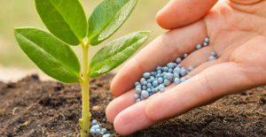 سموم کشاورزی مخصوص گردو